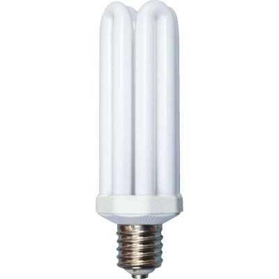 Woods 300W Equivalent Daylight Mogul Base 4U Security Fixture Replacement CFL Light Bulb